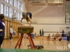 dsc_8834-gymnastics-competition
