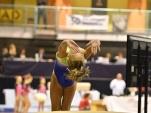 dsc_0095-gymnastics-competition
