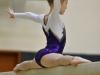 dsc_7122-nationals-gymnastics