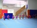 dsc_1770-salto-2013-gymnastics-camp