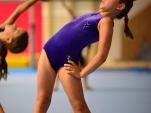 dsc_2285-salto-2013-gymnastics-camp