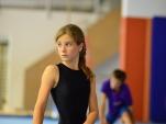dsc_2298-salto-2013-gymnastics-camp