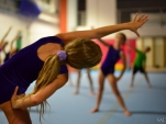 dsc_2952-salto-2013-gymnastics-camp