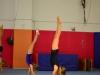 dsc_3001-salto-2013-gymnastics-camp