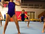 dsc_4139-salto-2013-gymnastics-camp